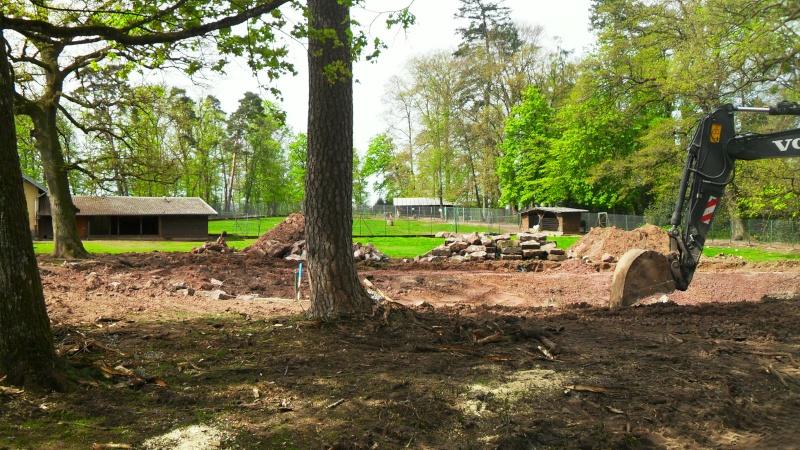 Travaux dans le Parc du Château et vieille ville - Page 2 Sdc13510