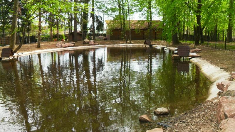 Travaux dans le Parc du Château et vieille ville - Page 2 Sdc13514