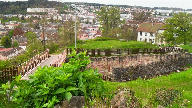 Travaux dans le Parc du Château et vieille ville - Page 2 Sdc13611