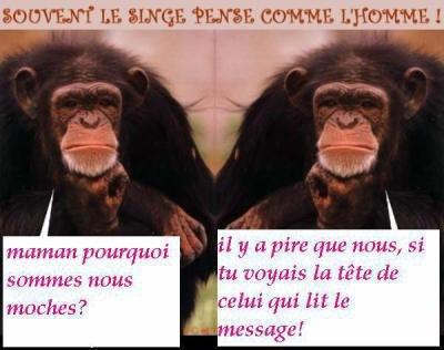 Image drôle - Page 2 29897_10