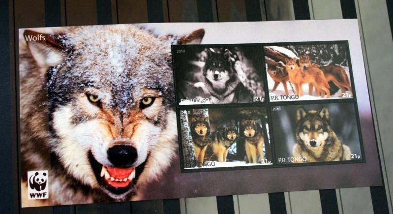 Husky`s und Wölfe  Unbena15