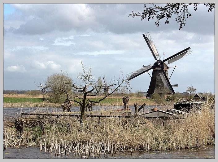 Les moulins de Kinderdijk. _mg_0918