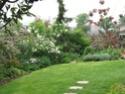 Le jardin de Gisou Img_0326