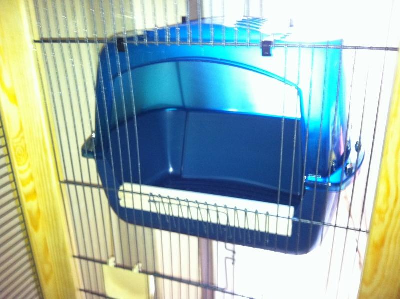 Question de cage Img_0316