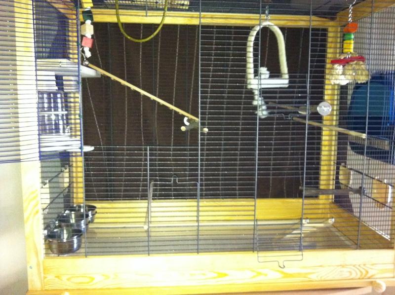 Question de cage Img_0319