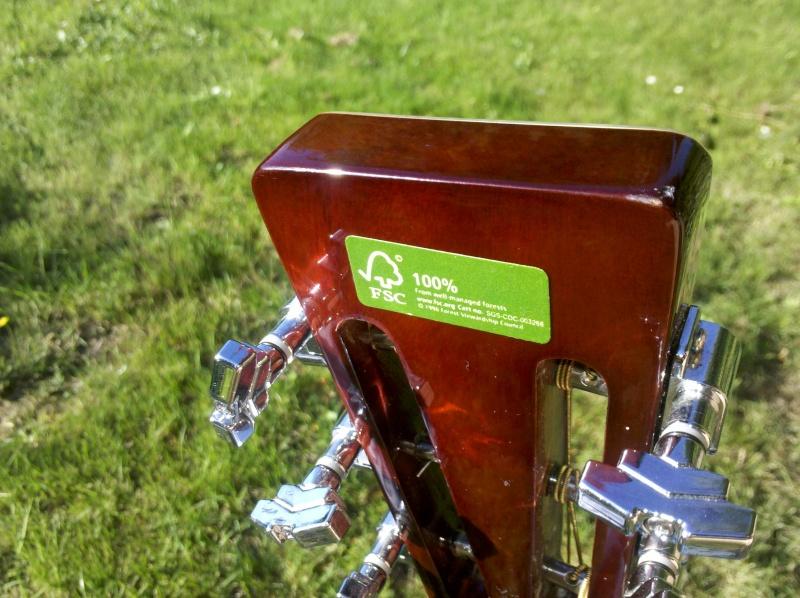 Votre avis sur Harley Benton HBN 100 SVP 2011-013