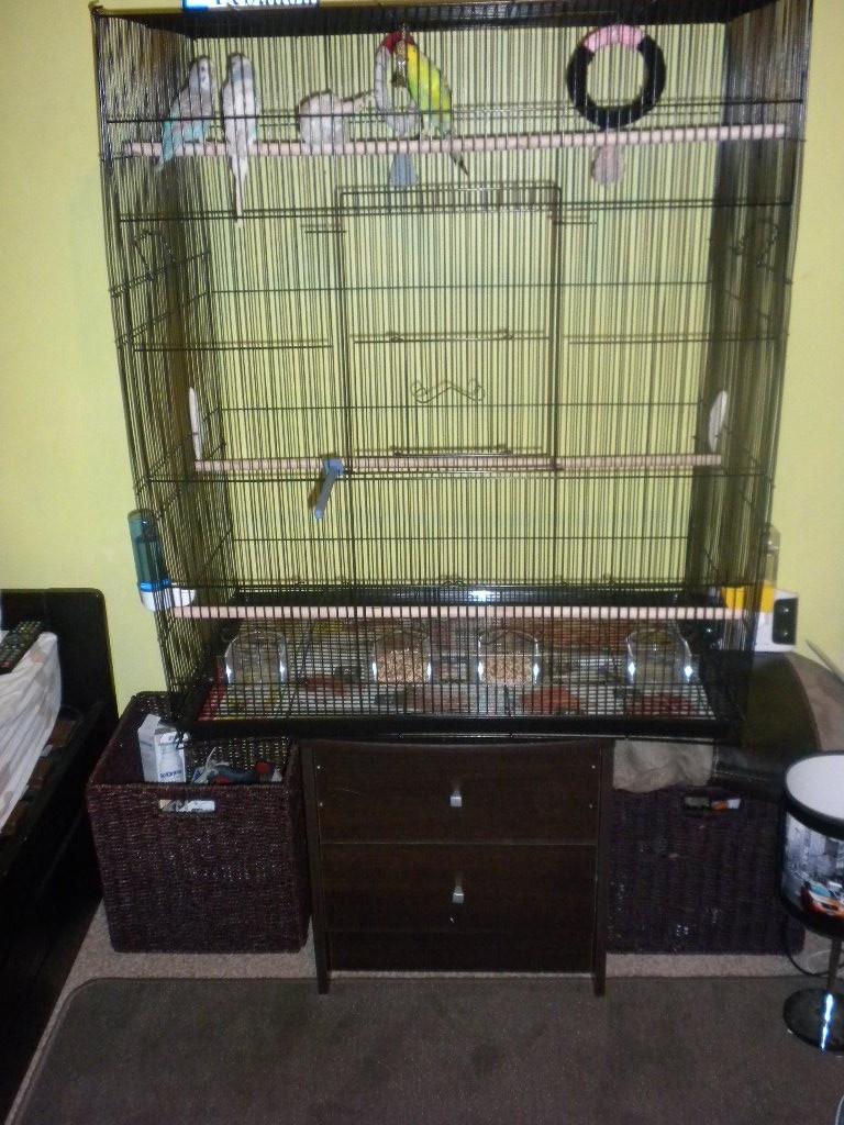 Vos avis sur ces cages pour un couple de perruches - Page 4 Cage1_10