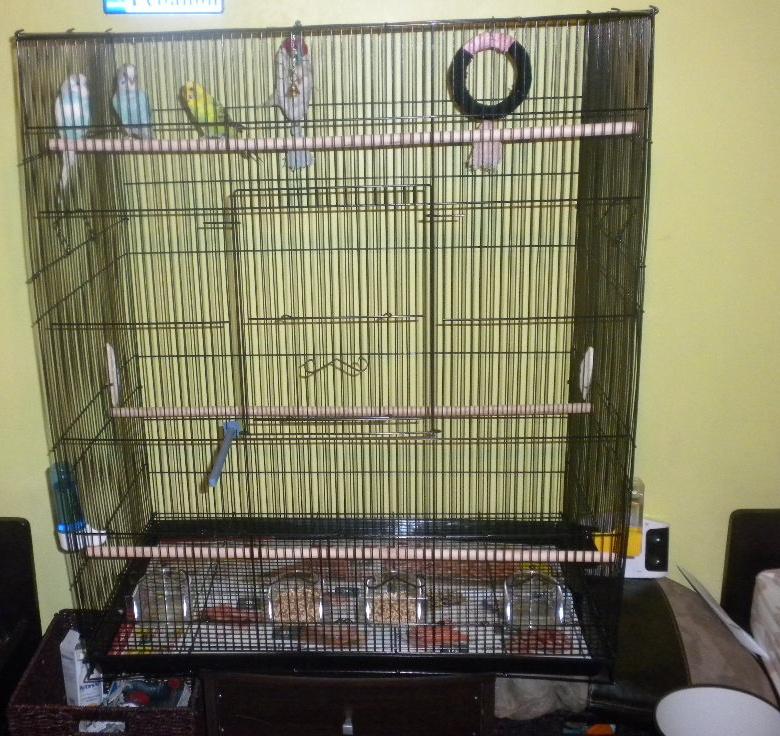 Vos avis sur ces cages pour un couple de perruches - Page 4 Cage2_10