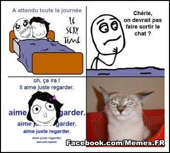 Image marrante - Page 3 37790910
