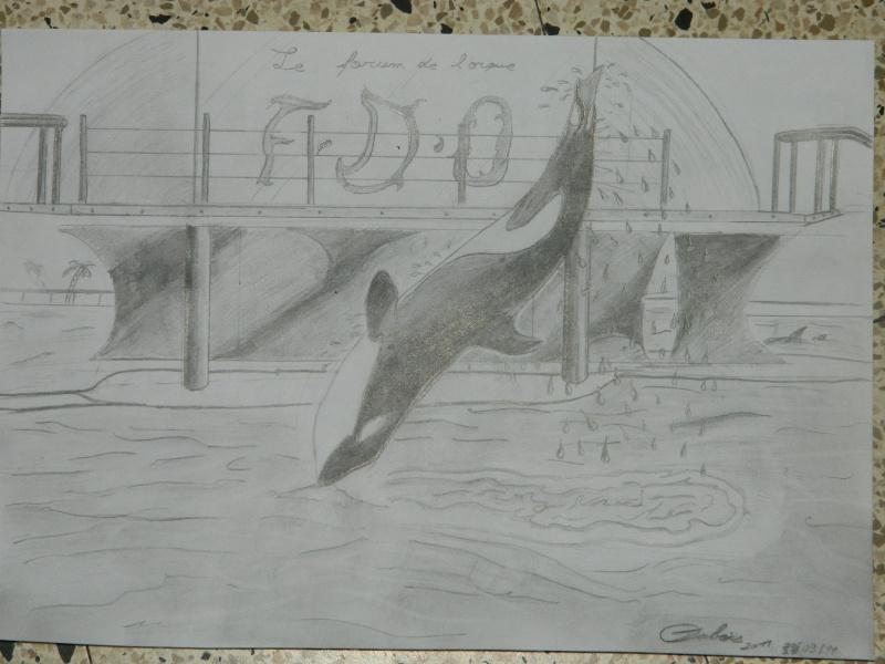 (dessin) dessin d'orque Dscn3510