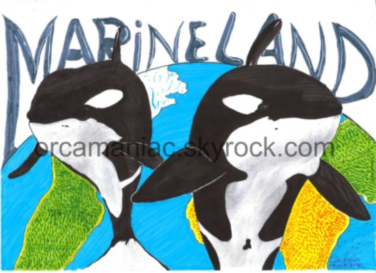 (dessin) dessin d'orque - Page 3 Hj10