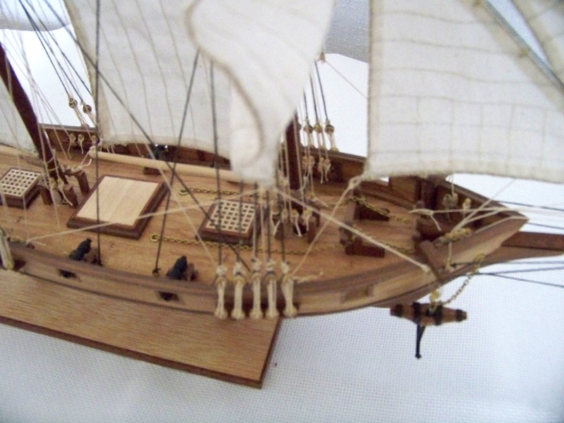 L'Albatros 1840 au 1/50e Albatr12
