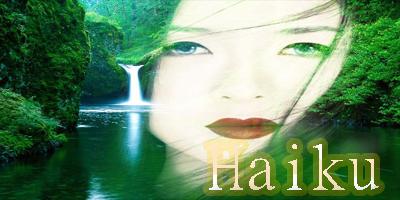 Concurso No.2 Haiku10
