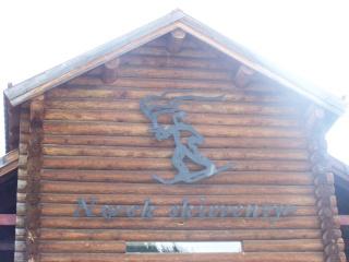 MUSEE DU SKI - MORGEDAL - NORVEGE 0608_o10