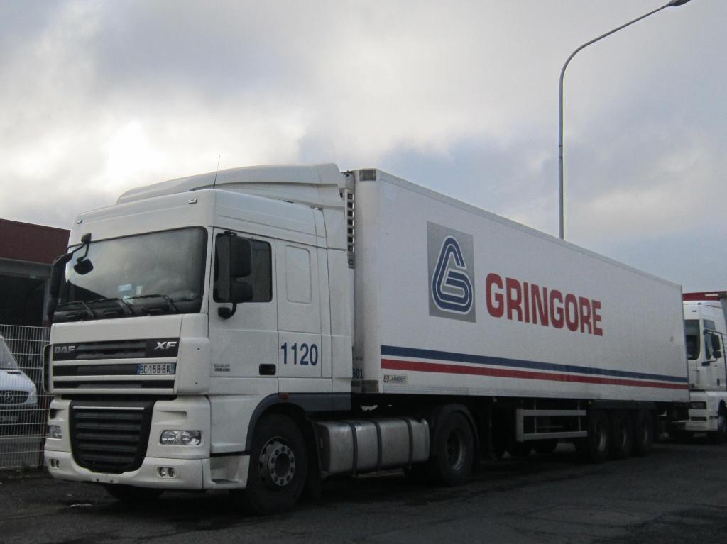 Gringore (Ifs, 14) Daf_x734