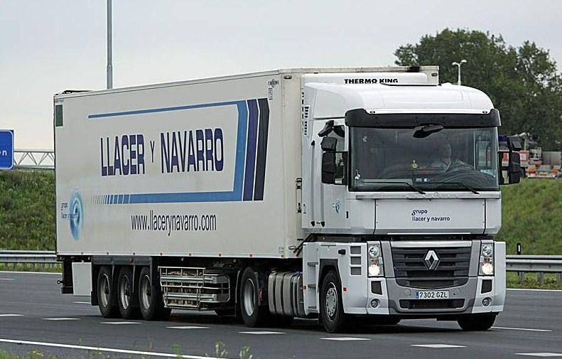 LLacer y Navarro - Oliva Magnu251