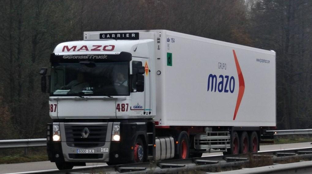 Mazo (Alzira - Valencia) Magnu362