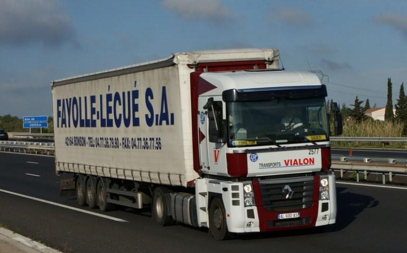 Transports J Vialon (La Fouillouse, 42) - Page 2 Magnu481