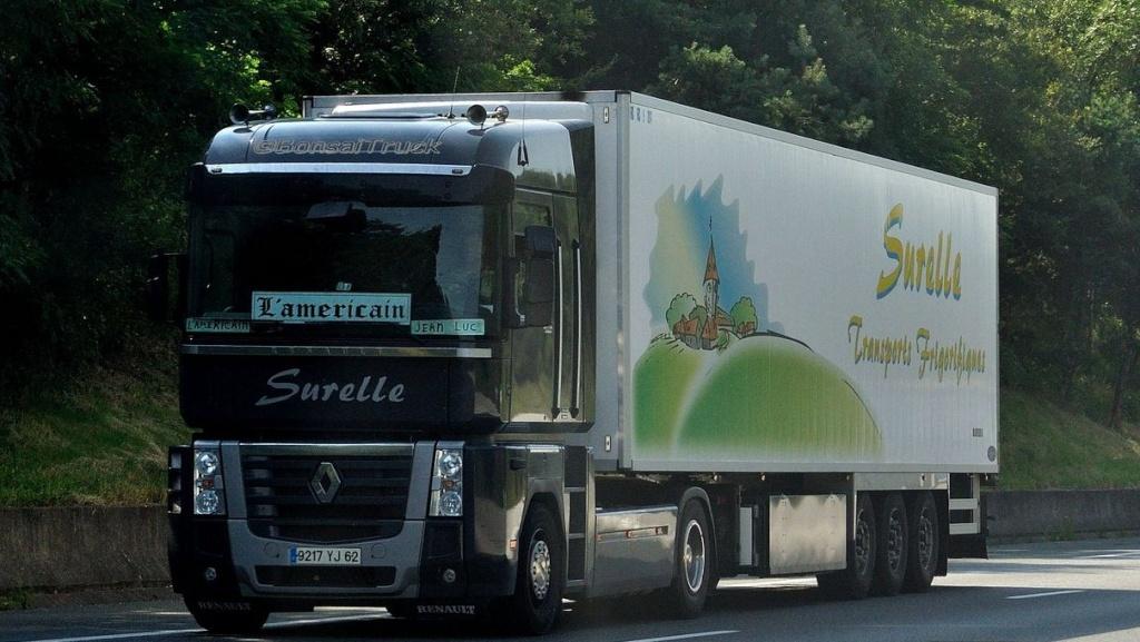 Surelle Transports Frigorifiques ( STF/PAF)( Sains les Pernes 62) Magnu497