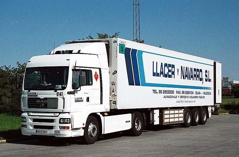 LLacer y Navarro - Oliva Man_t298
