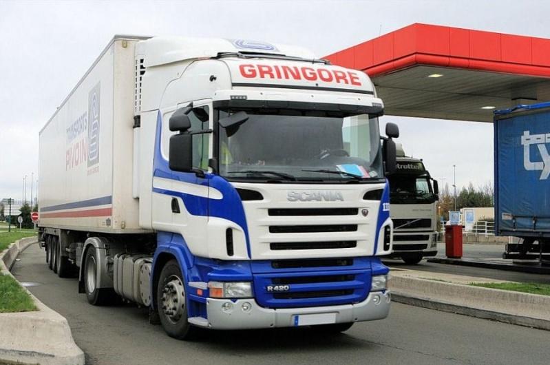 Gringore (Ifs, 14) Scania41