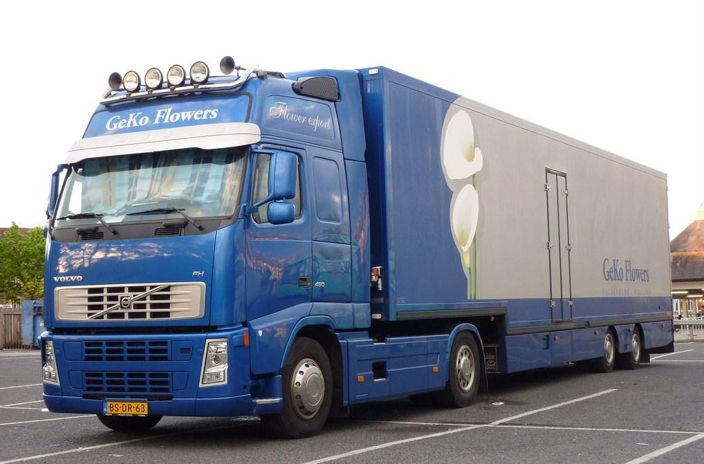 GeKo Flowers (Walkenburg) Volvo847