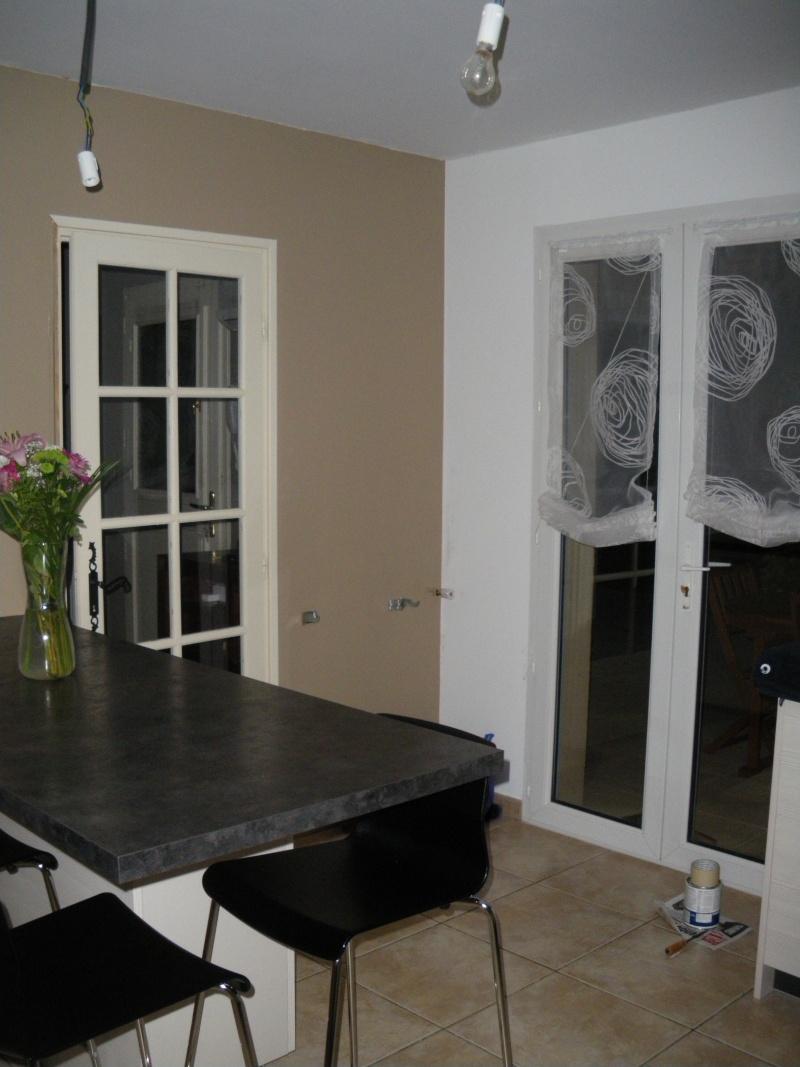 Aide pour choix de couleur peinture des murs de cuisine Imgp4213