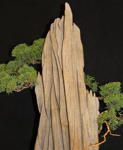 Mostra bonsai e Trofeo Città di Arzignano 25 aprile 2012 25-04-22