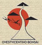 Mostra bonsai e Trofeo Città di Arzignano 25 aprile 2012 Logoov10