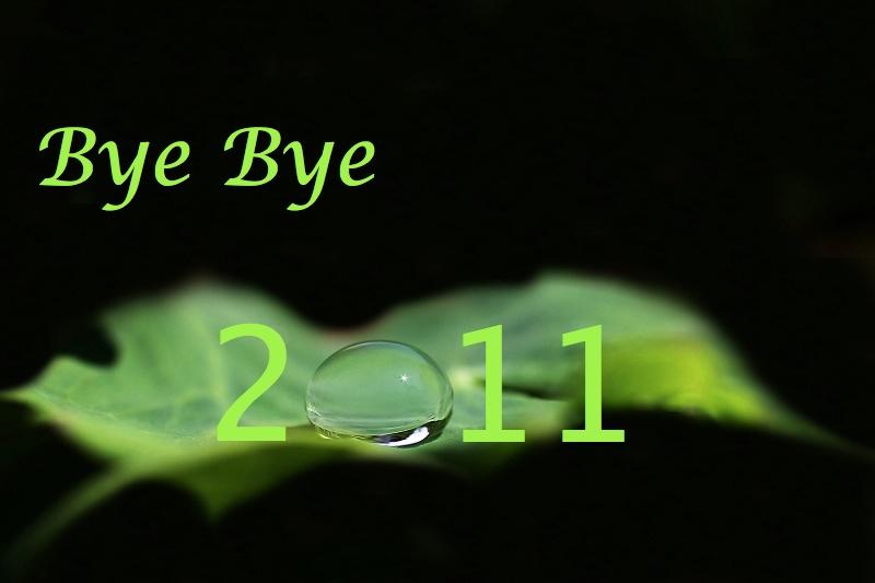 Bye Bye Img_1610