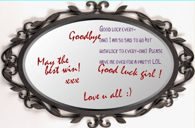 Goodbyes Mirror 14542610
