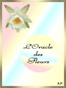 L'Oracle des Fleurs  Oracle11