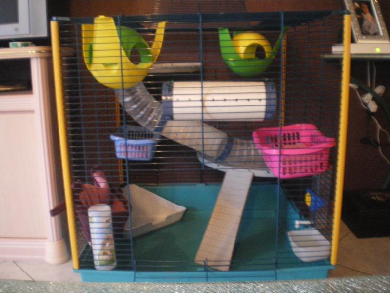 Vend cage furet XL Imgp6111