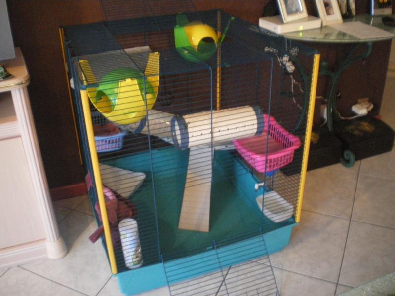 Vend cage furet XL Imgp6112
