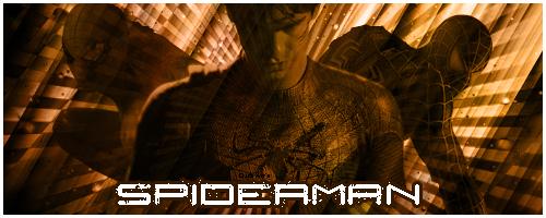 New Vs New Spider10