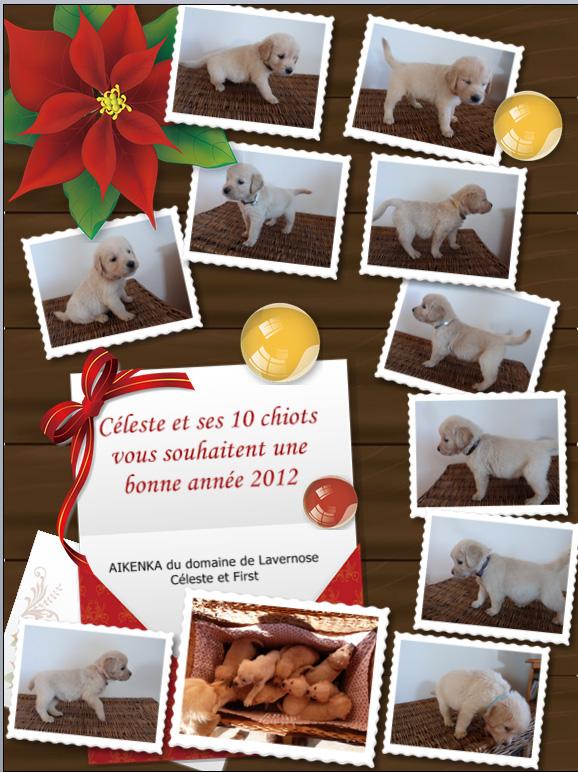 Bonne année 2012 Bonne_10