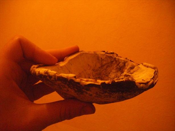 Objets en champignon Dscf1512