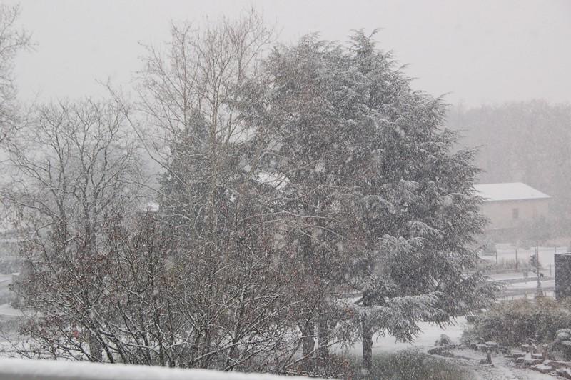 Séries hivernales - topic saisonnier de mes clichés Dsc_1610