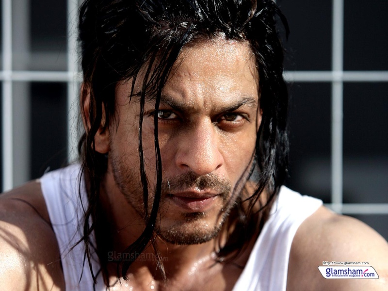 New Hindi Movie Don 2 all songs download from here. Don210