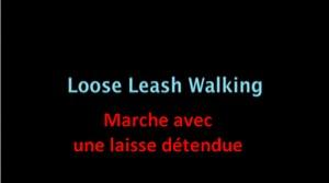 Marche en laisse détendue (vidéo) - Page 4 Text_110