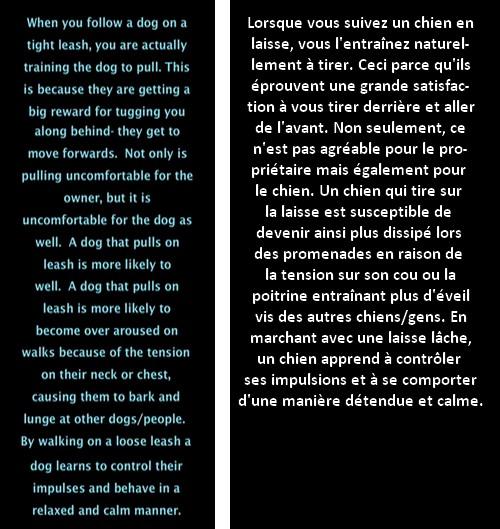Marche en laisse détendue (vidéo) - Page 4 Text_210