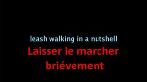 Marche en laisse détendue (vidéo) - Page 4 Text_310