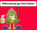 Bonjour de France !! Bienve13