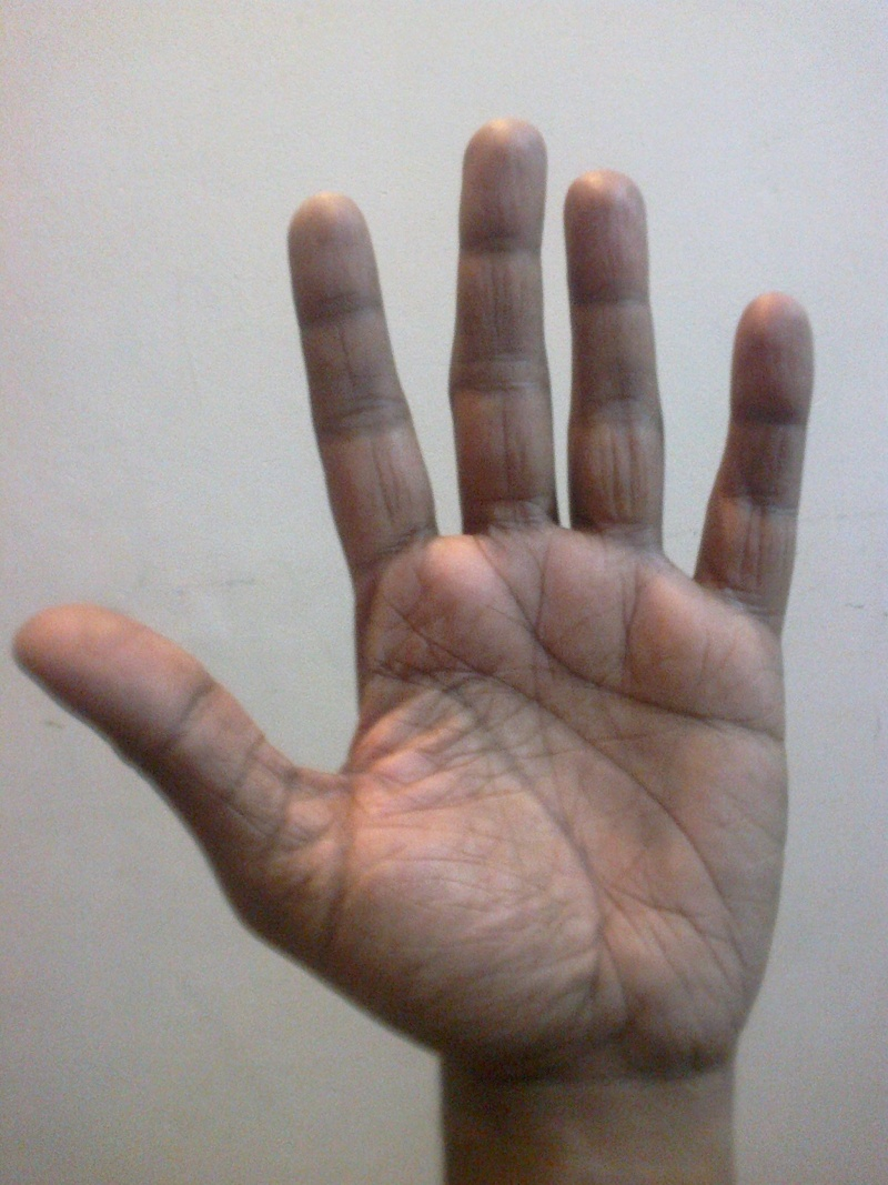 Can my birth chart(from 2) determined by seeing my palm? Left_h12