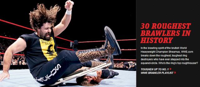 [Divers] Top 30 des meilleurs brawlers de l'histoire selon WWE.com Sans_t13