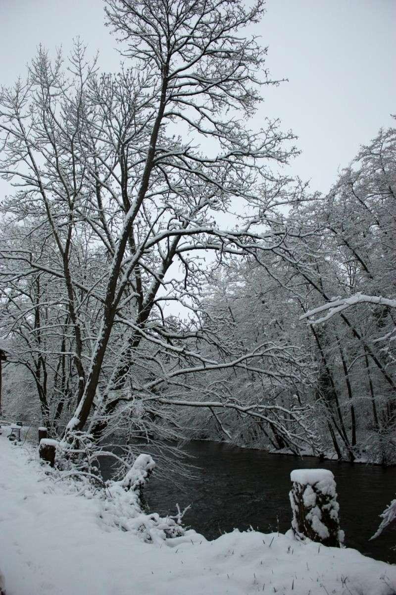 L'hiver tardif mais magnifique Img_0514
