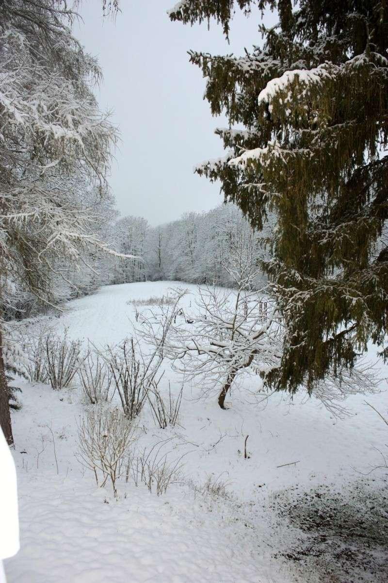 L'hiver tardif mais magnifique Img_0515
