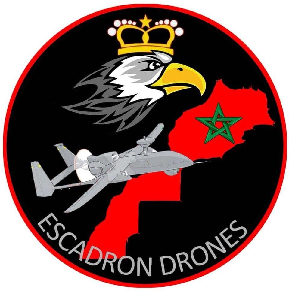 Moroccan UAV / Drones chez les FRA - Page 9 Ecusso10