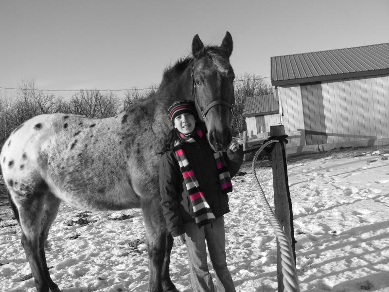 Nouveau concours photos ! La neige, vous, vos chevaux ! - Page 3 P1140014
