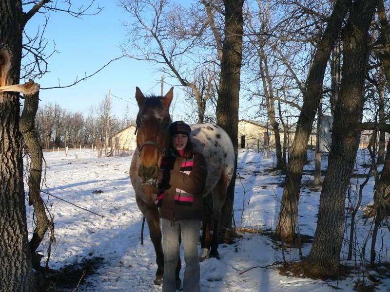 Nouveau concours photos ! La neige, vous, vos chevaux ! - Page 3 P1140015